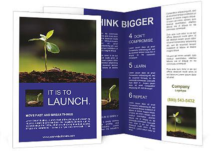 0000090301 Brochure Template