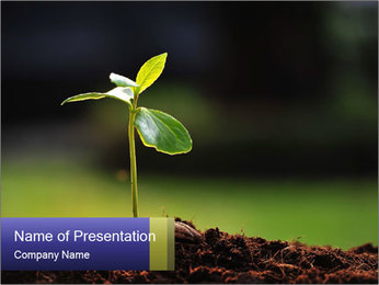 New Green Plant PowerPoint Template - Slide 1