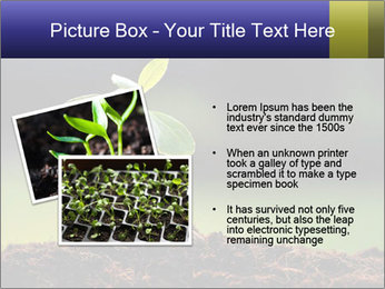 New Green Plant PowerPoint Template - Slide 20