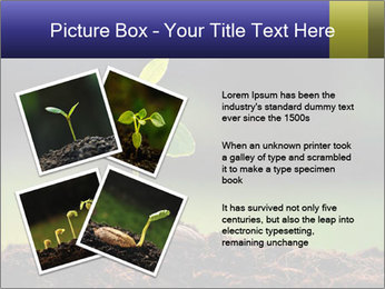 New Green Plant PowerPoint Template - Slide 23