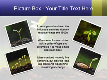 New Green Plant PowerPoint Template - Slide 24