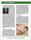 0000090303 Word Template - Page 3