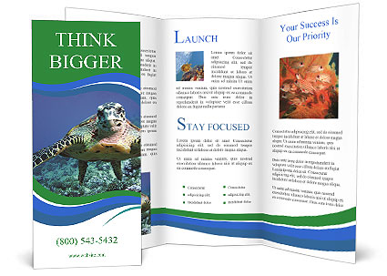 0000090307 Brochure Templates