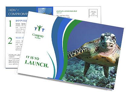 0000090307 Postcard Template