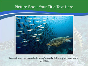 Reef And Turtle PowerPoint Template - Slide 16