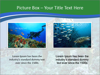Reef And Turtle PowerPoint Template - Slide 18