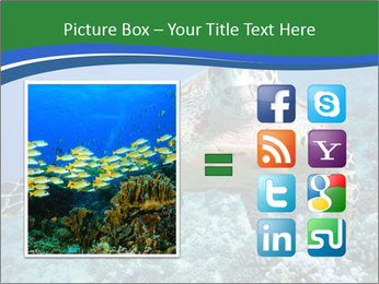 Reef And Turtle PowerPoint Template - Slide 21