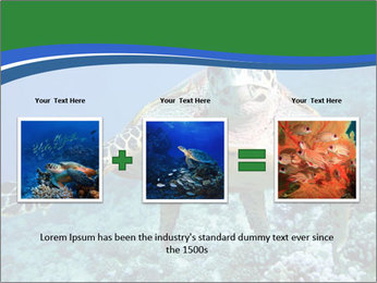 Reef And Turtle PowerPoint Template - Slide 22
