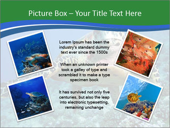 Reef And Turtle PowerPoint Template - Slide 24