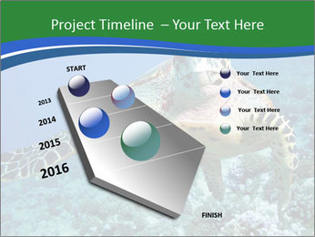 Reef And Turtle PowerPoint Template - Slide 26