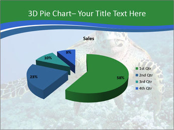 Reef And Turtle PowerPoint Template - Slide 35