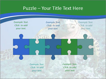 Reef And Turtle PowerPoint Template - Slide 41