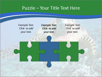 Reef And Turtle PowerPoint Template - Slide 42