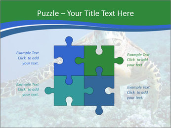 Reef And Turtle PowerPoint Template - Slide 43