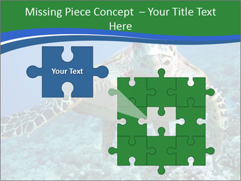 Reef And Turtle PowerPoint Template - Slide 45