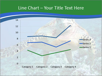 Reef And Turtle PowerPoint Template - Slide 54