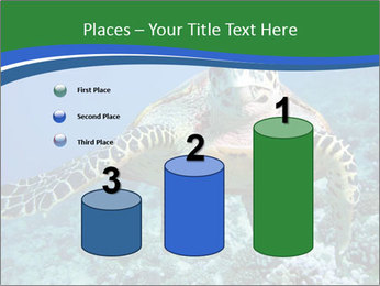 Reef And Turtle PowerPoint Template - Slide 65
