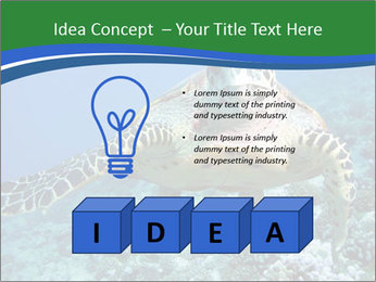 Reef And Turtle PowerPoint Template - Slide 80