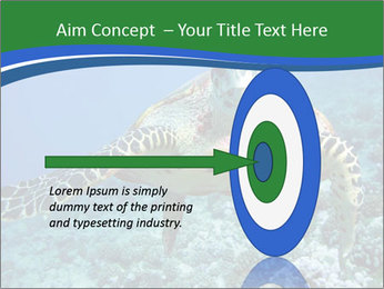 Reef And Turtle PowerPoint Template - Slide 83