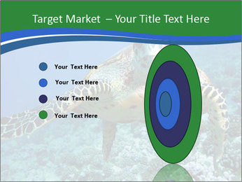 Reef And Turtle PowerPoint Template - Slide 84