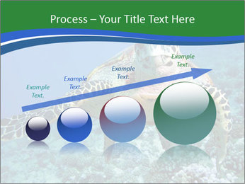 Reef And Turtle PowerPoint Template - Slide 87