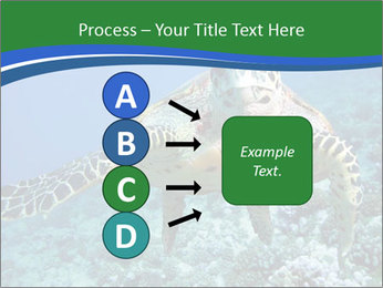 Reef And Turtle PowerPoint Template - Slide 94