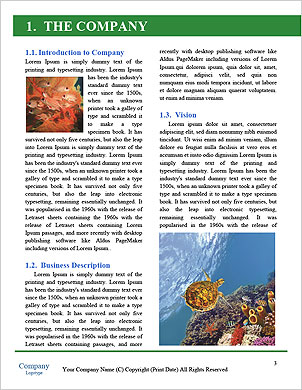 0000090307 Word Template - Page 3