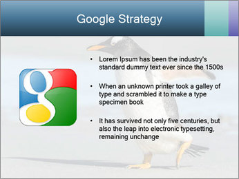 Funny Penguin PowerPoint Template - Slide 10