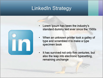 Funny Penguin PowerPoint Template - Slide 12