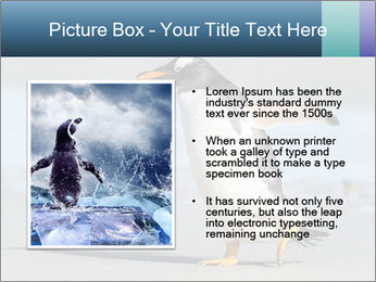 Funny Penguin PowerPoint Template - Slide 13