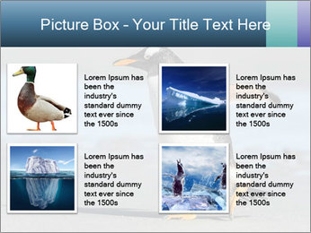 Funny Penguin PowerPoint Template - Slide 14
