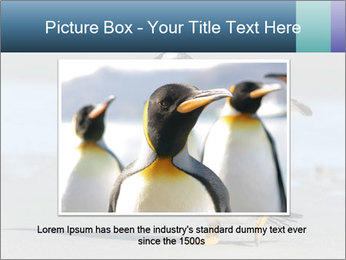 Funny Penguin PowerPoint Template - Slide 15