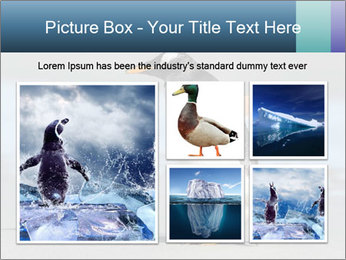 Funny Penguin PowerPoint Template - Slide 19