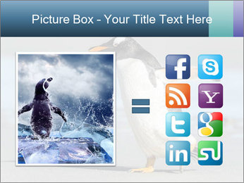 Funny Penguin PowerPoint Template - Slide 21