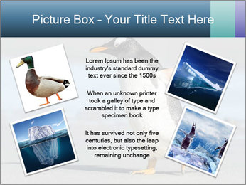 Funny Penguin PowerPoint Template - Slide 24