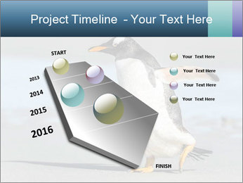 Funny Penguin PowerPoint Template - Slide 26