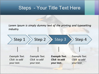 Funny Penguin PowerPoint Template - Slide 4