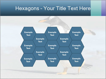 Funny Penguin PowerPoint Template - Slide 44