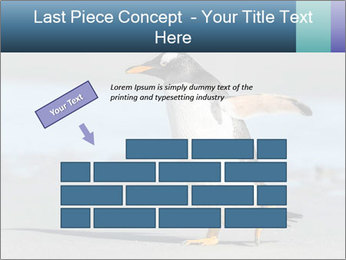 Funny Penguin PowerPoint Template - Slide 46