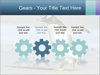 Funny Penguin PowerPoint Template - Slide 48