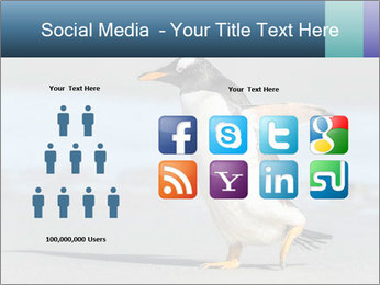 Funny Penguin PowerPoint Template - Slide 5