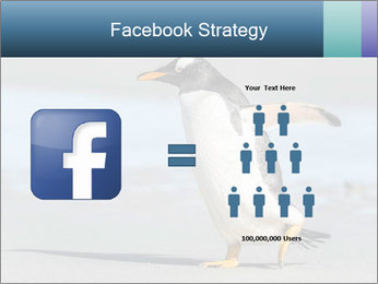 Funny Penguin PowerPoint Template - Slide 7