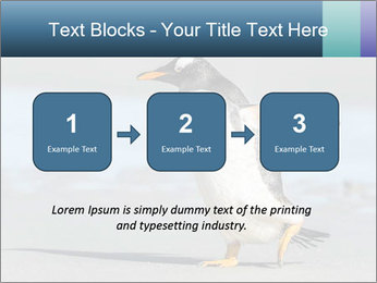Funny Penguin PowerPoint Template - Slide 71