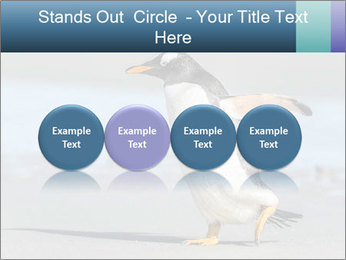 Funny Penguin PowerPoint Template - Slide 76