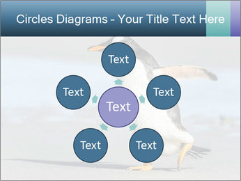 Funny Penguin PowerPoint Template - Slide 78