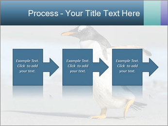 Funny Penguin PowerPoint Template - Slide 88