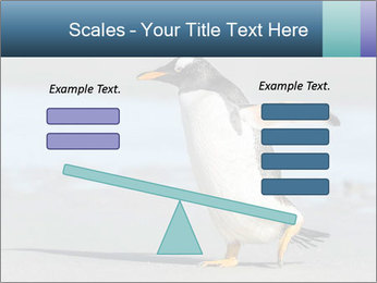 Funny Penguin PowerPoint Template - Slide 89