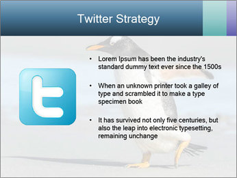 Funny Penguin PowerPoint Template - Slide 9