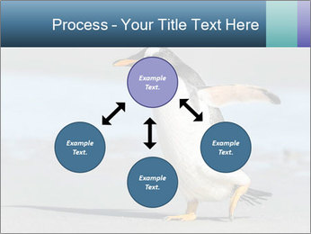 Funny Penguin PowerPoint Template - Slide 91