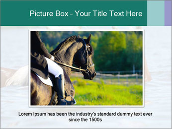 Two Horses In water PowerPoint Template - Slide 15